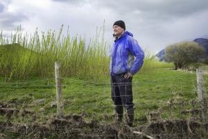 Прибыль и диверсификация по душе английским фермерам