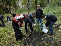 В 2011 в Кузбассе будет посвящен защите лесов