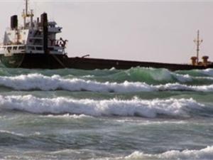 Черноморцы просят спасти Тарханкут от экологической катастрофы