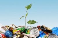2013 год – Год экологической культуры в России