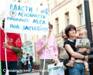 В поддержку Сиверского леса пройдет пикет у Генпрокуратуры Лен. обл.