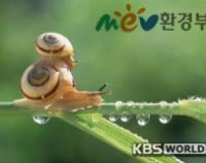 В Южной Корее знают, как бороться с парниковыми газами