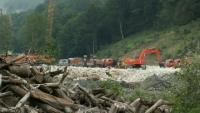 20 тысяч га леса высадят в Сочи в ходе олимпийского строительства