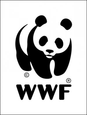 Экологические итоги 2011 года