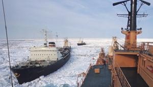 Экологи озабочены состоянием Арктики