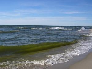 Обеспечение экологической безопасности бассейна Балтийского моря за счет утилизации осадков сточных вод гальванических производств
